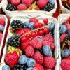 Beneficios de la fruta congelada IQF
