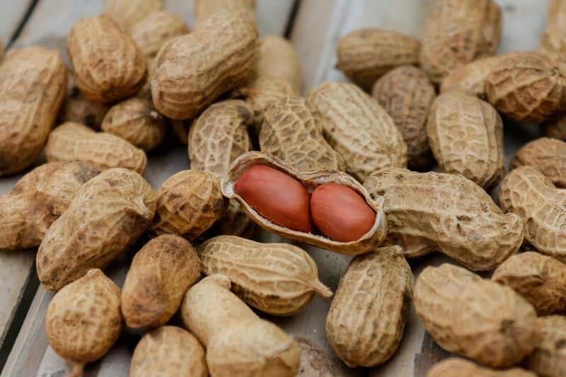 hacer-mantequilla-de-cacahuete-con-cacahuetes-naturales